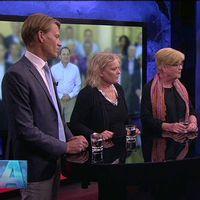 PM Nilsson, politisk redaktör på Dagens industri, Lena Mellin, inrikespolitisk kommentator på Aftonbladet och Lotta Gröning, röd kolumnist på Expressen.