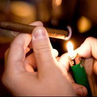 Den svenska snusjätten Swedish Match tillverkar även cigarrer i bland annat östra Java genom bolaget världens största cigarr- och piptobakstillverkare STG, ett företag som Swedish Match är delägare i.