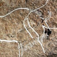 Unika målningar av bland annat bufflar på grottväggen.