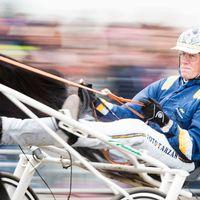 Stefan Melander på hästen Nuncio under Elitloppet 2015.