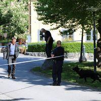 Polisen på Skeppsholmen.