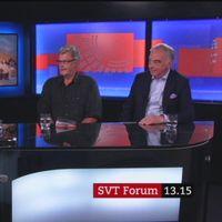 Programledare Lennart Persson, fd MP-språkröret Birger Schlaug och fd FP-ledaren Lars Leijonborg