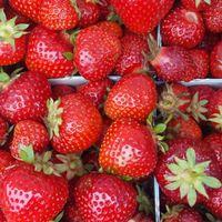 jordgubbskontroller