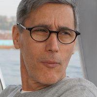 Halil Karaveli, svensk-turkisk forskare, Turkietkännare.