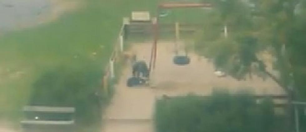 Hund misshandlades på lekplats
