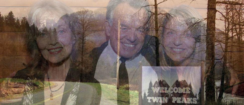 Familjen Palmer spelas av Grace Zabriskie, Ray Wise och Sheryl Lee. Här fotograferade 2014.