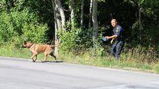 En stor polisinsats pågår just nu i Uppsala län. Polisen söker efter flera gärningsmän med flera patruller och helikopter. Rånarna ska enligt uppgift ha lagt ut fotanglar under flykten.