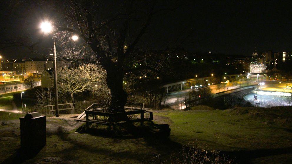 Utsiktsplatsen Fåfängan.
