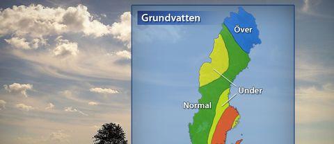Karta över grundvattennivåer i Sverige, källa SGU.