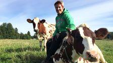 Elin Torstensson, mjölkbonde utanför Österbybruk norr om Uppsala