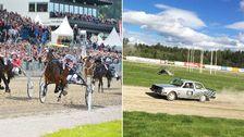 hästar i travlopp, rallybil kör på travbana