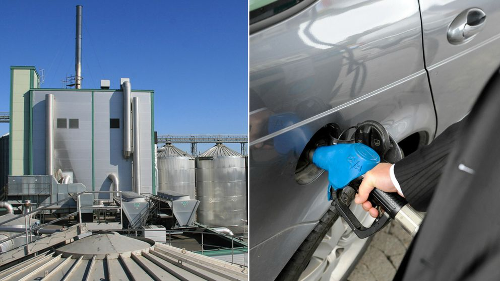 Merparten av den etanol som tillverkas på Lantmännen Agroetanols anläggning i Norrköping fylls i tanken på bilar på kontinenten.