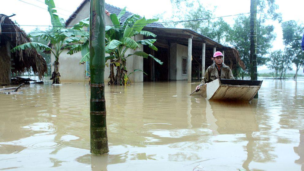 Kraftigt regn i Vietnam har krävt minst 11 människors liv och raserat tiotusentals hem.