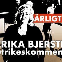 SVT:s utrikeskommentator Erika Bjerström