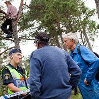 Två män pratar med en kvinnlig polis, samtidigt som en man sitter uppe i ett träd för att förhindra skogsavverkningen.