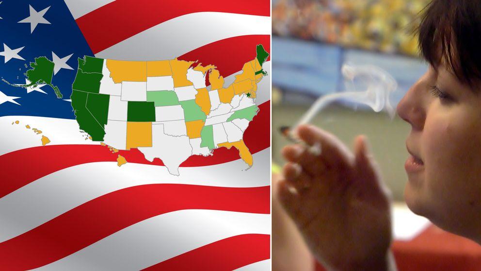 Flera delstater legaliserar cannabis – hur ser kartan ut nu?