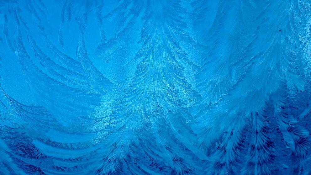 """Bilden """"Rimfrost"""" är från insidan av bilrutan och är tagen den 11/11-2016 tidigt på morgonen i Uddevalla."""