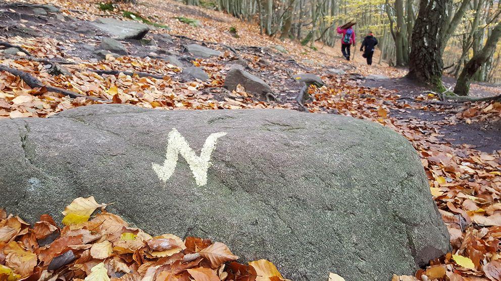 Länsstyrelsen menar att det är livsfarligt att klättra ned till Nimis och tar bort markeringarna ned mot konstverket och svartbygget.