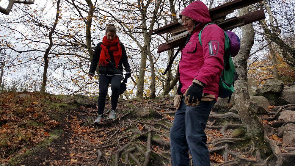 40 000 turister besöker årligen Nimis på Kullaberg. Det påhittade landet Ladonien på kullaberg har 18 000 medborgare.