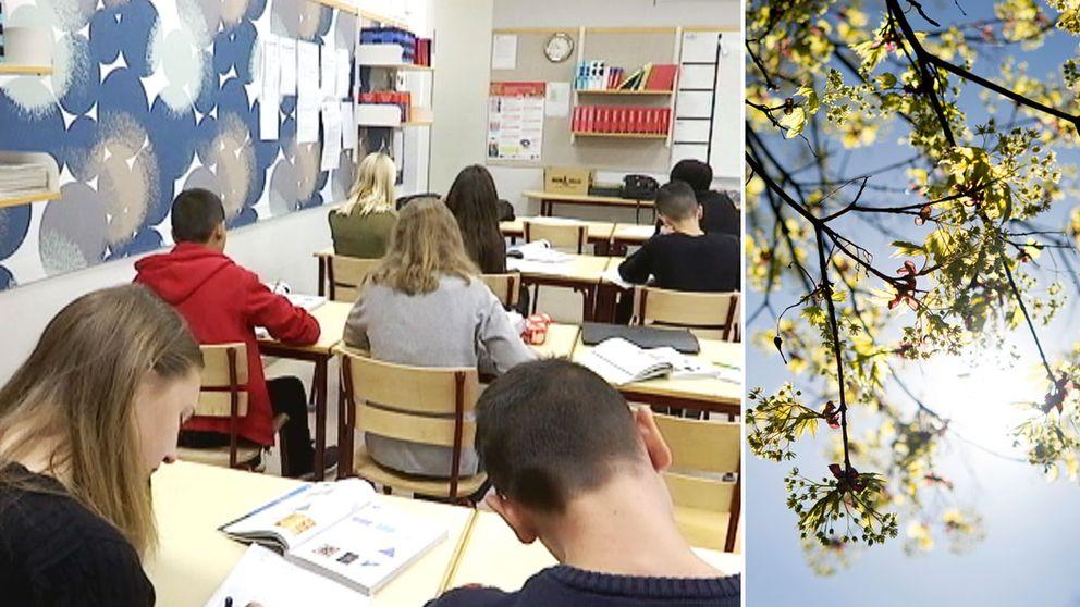 Vårljus i klassrummet gjorde så att elever presterade bättre.