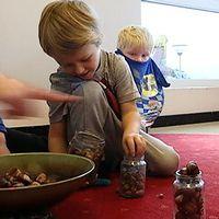 Här räknar barnen med kastanjer och ekollon.