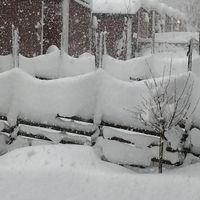 Närapå meterdjup snö i Ursviken sydost om Skellefteå i Västerbotten den 5 november.
