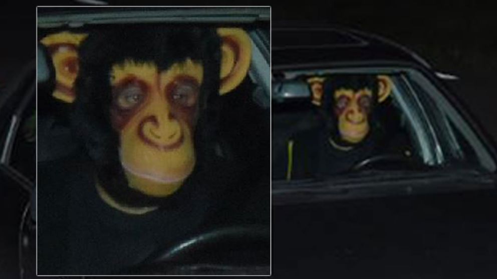 En man iklädd schimpansmask gäckar polisen.