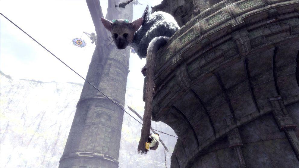 Pojken klättrar upp för Tricos svans.