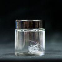Fotomontage. Till vänster ett porträtt på forskaren Marlene Andersson. till höger en bild på en glasbruk innehållande konstgjord spindeltråd.