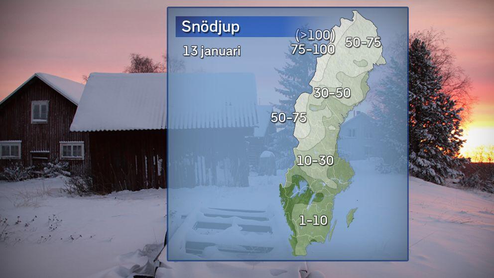 Snödjup, 13 januari.