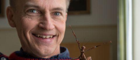 Fredrik Ronquist, professor, expert på insekter vid Naturhistoriska riksmuséet i Stockholm. Insekten på bilden är en vandrande pinne.