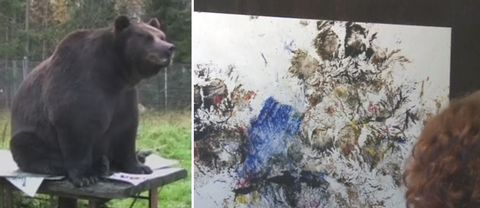 En brunbjörn och en tavla.