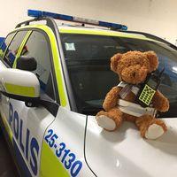 Nallebjörn gör praktik hos polisen