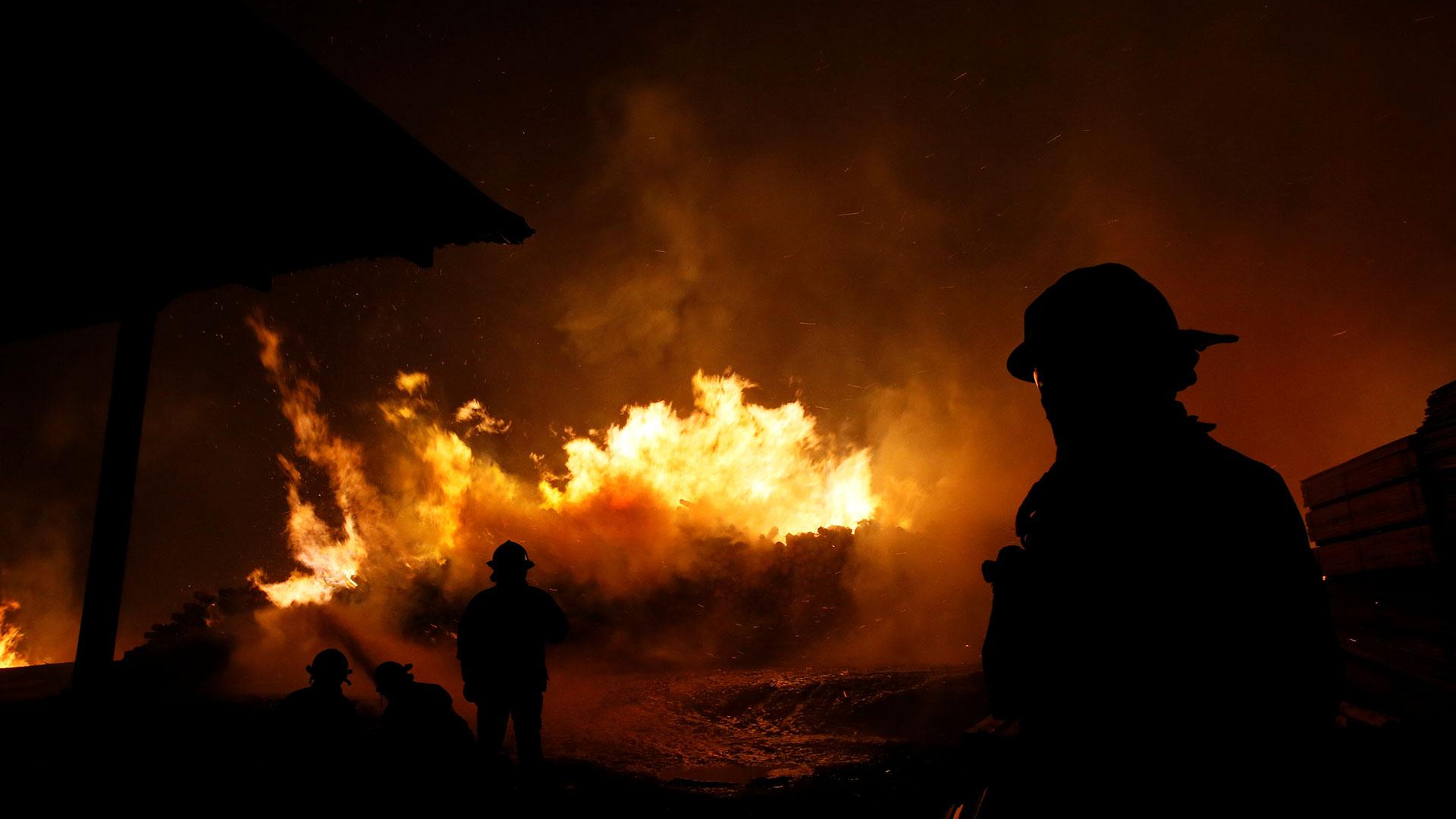 Dodsiffran stiger efter skogsbrander i chile