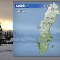 Snödjup 7 februari
