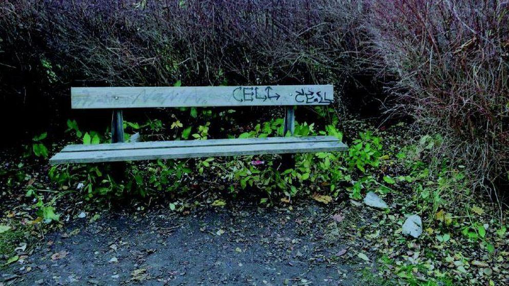 Vid den är bänken i länsstyrelsens park våldtogs den 15-årige pojken av tre yngre män.