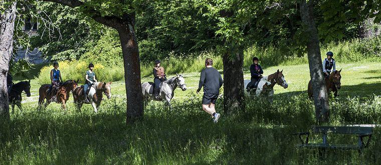 STOCKHOLM 2015-06-16 Ryttare och joggare längs med Djurgårdsbrunnskanalen en vacker sommardag Foto: Lars Pehrson / SvD / TT / Kod: 30152 ** OUT DN och Dagens Industri (även arkiv) och Metro**