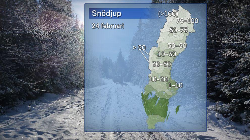Snödjup 24 februari