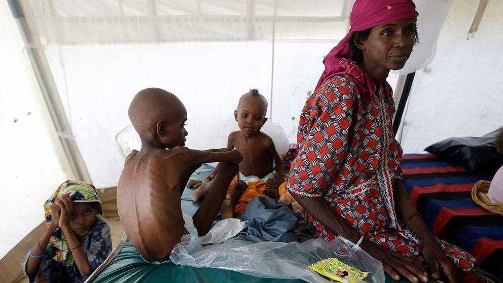 Nära 1,4 miljoner barn som är akut undernärda riskerar att dö av svält i år i Nigeria, Somalia, Sydsudan och Jemen, enligt FN:s barnfond Unicef. Bilden är tagen på en klinik i Maiduguri i Nigeria.
