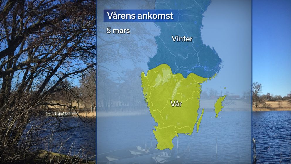 Vårens ankomst, där gult betyder att våren anlänt (sju dygn på raken med dygnsmedeltemperatur över 0 grader) och blått betyder att det fortsatt råder meteorologisk vinter (dygnsmedeltemperatur under 0 grader).