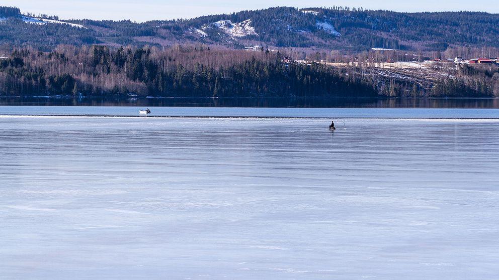 Vinterpimplaren håller ut i det längsta.  Bilden är tagen på Fryken i Lysvik, Värmland, lördag den 11/3.