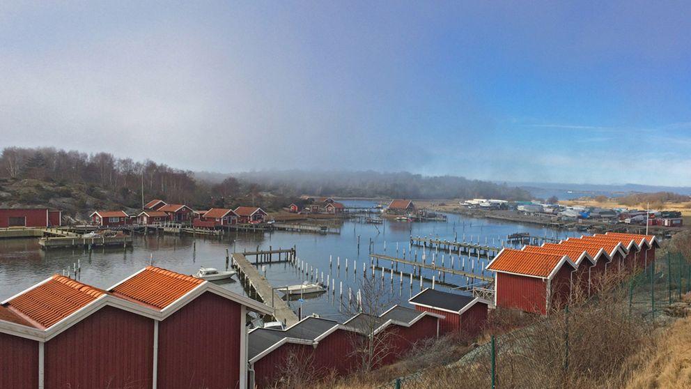 Önnereds småbåtshamn. Morgondimma och vårljus.