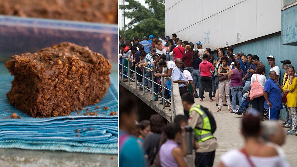 Brownie samt människor i Venezuela som köar efter mat. Arkivbild.