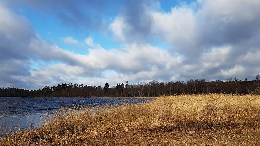 Väldigt blåsigt, men solen är på väg och det bästa av allt är att det nästan är isfritt på sjön Gron i Butbro Finspång