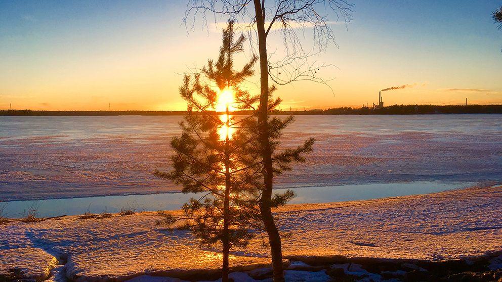 Solen sänker sig ner över Södra Stadsfjärden 17.03 i Vasa, FINLAND