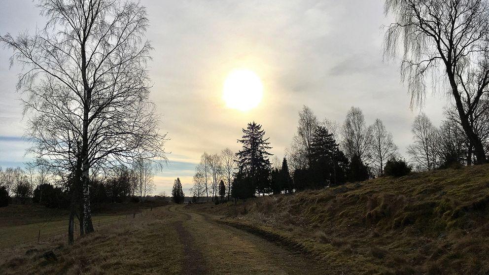Solig morgon i Lindsdal, Kalmar, 18 mars
