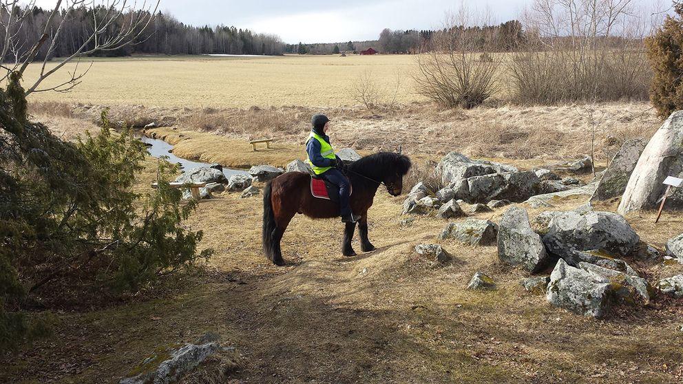 Tingstukällan i Bälinge norr om Uppsala