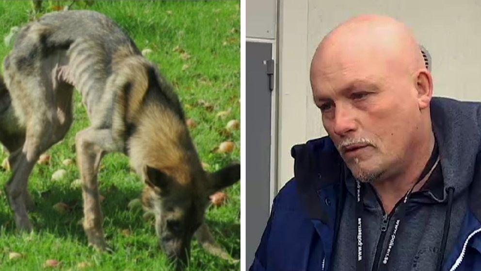 Patrik Hallberg, djurhandläggare på polisen i Värmland.