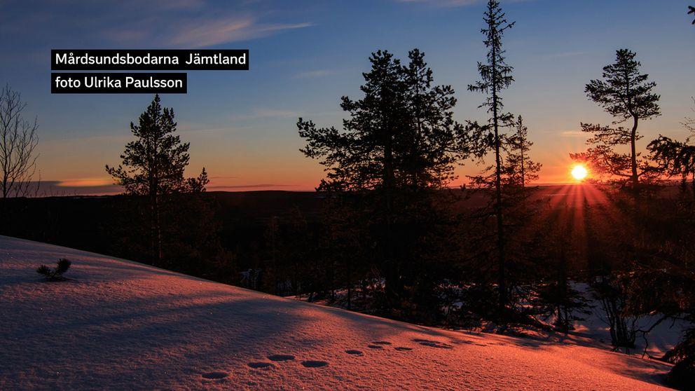 Minus 15 och vindstilla denna morgon den 19/3. Mårdsundsbodarna Jämtland