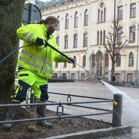 Thomas Rapp sanerar bort veckans fågelspillning i centrala Örebro. I bakgrunden syns ett av de träd som beskurits kraftigt för att färre fåglar ska kunna landa där.